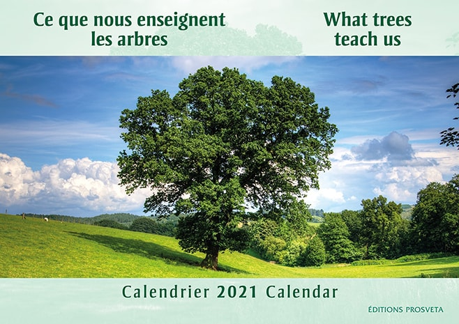 Calendar 2021: 'What trees teach us'